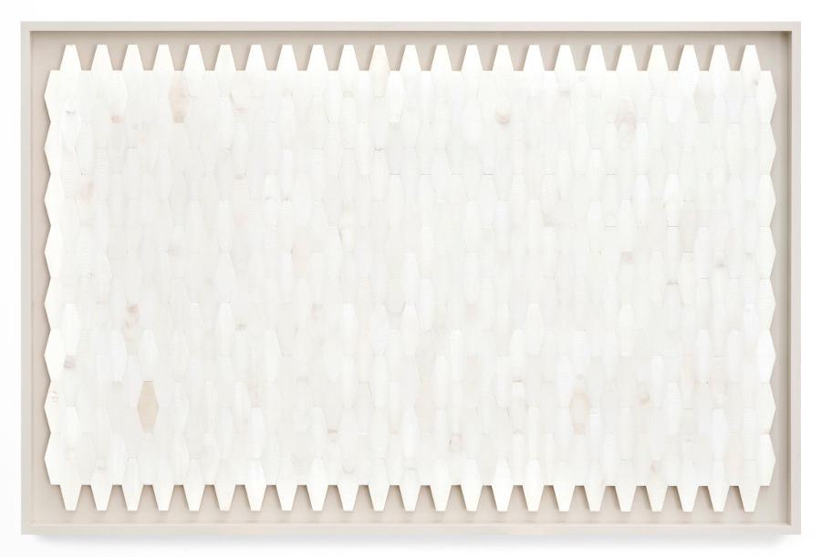 Panel of cuttlefish bones